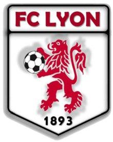 Гід-перекладач для футбольної команди «Ліон»